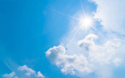 Spanische Fliege bei Sonnenallergie